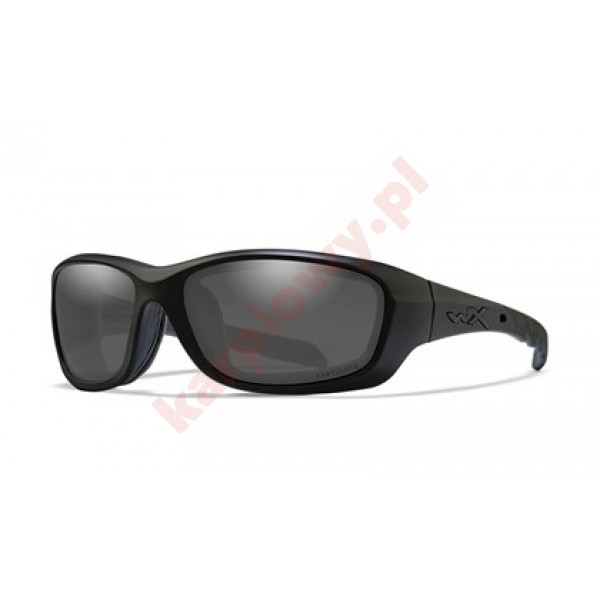 GRAVITY Captivate Smoke Grey Matte Black Frame